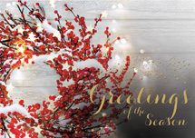 Sprinkle of Sparkle Holiday Cards