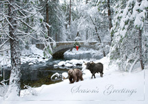 Stone Bridge Trail Holiday Cards